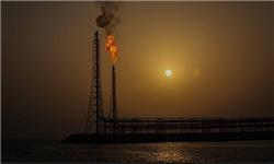 قیمت نفت همچنان در بازار می تازد